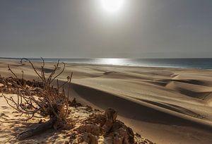De zandduinen van Boa Vista