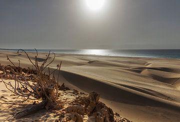 De zandduinen van Boa Vista van Jaap van Lenthe