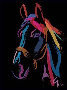 Cheval Color Me Beautiful sur Go van Kampen