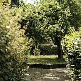 Vintage groene stadspark in Zutphen   Straatfotografie van Diana van Neck Photography