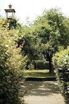 Vintage grüner Stadtpark in Zutphen | Straßenfotografie von Diana van Neck Photography