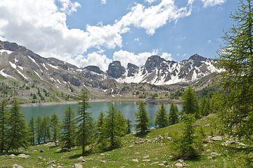 Provence Lac D Allos natuurgebied Parc National Du Mercantour van