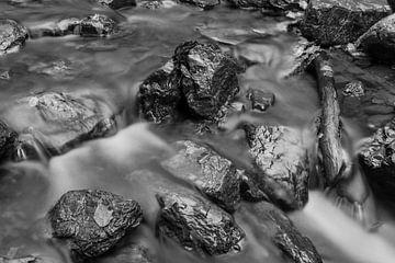 Black fall sur Photography by Karim