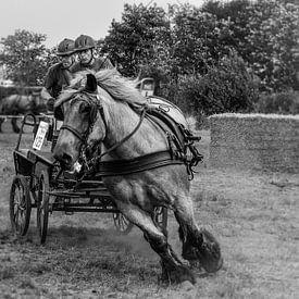 Horse drive van Wessel Krul