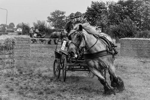 Horse drive van