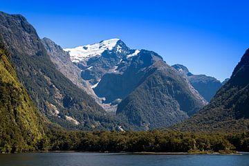 Cruise door Milford Sound, Nieuw Zeeland van Rietje Bulthuis