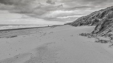 Verlaten strand van Timo Bergenhenegouwen