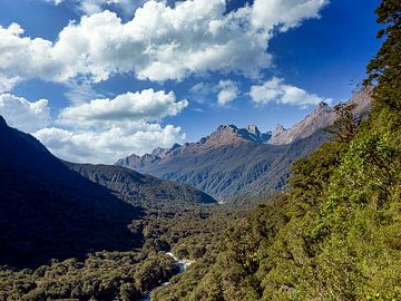 De Fiordland Vallei in Nieuw-Zeeland van Rik Pijnenburg