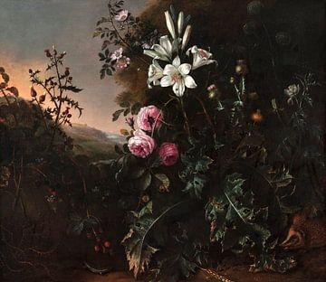 Stillleben, Matthias Withoos