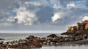 Madeira kust stad van videomundum