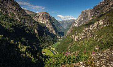 Stalheim uitzicht, Noorwegen [1] van Adelheid Smitt
