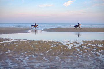 Paarden op het strand van Johan Vanbockryck