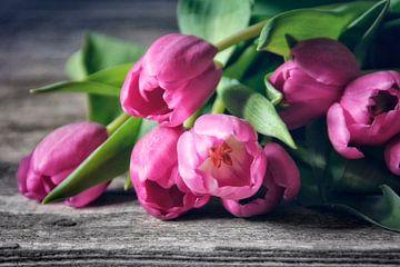 Tulpen in roze van Claudia Moeckel