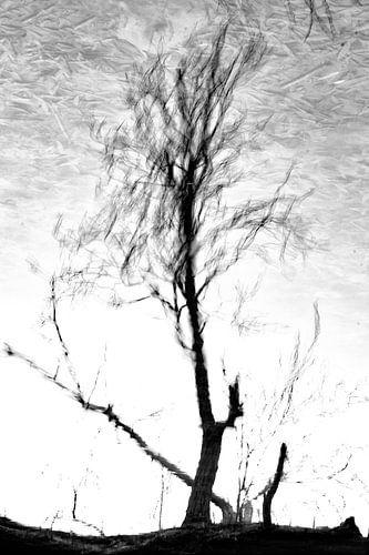 Omgekeerde reflectie van