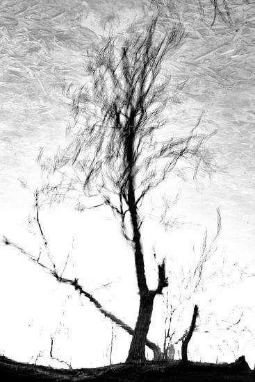 Fading Nature 6 van Pieter van Roijen