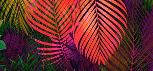 COLORFUL TROPICAL LEAVES no8