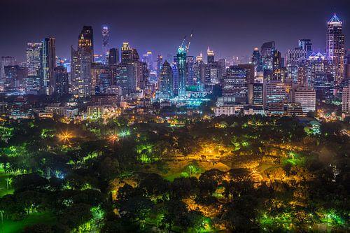 Lumpini Park by night