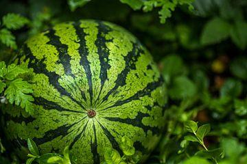 Meloen om van te smullen van