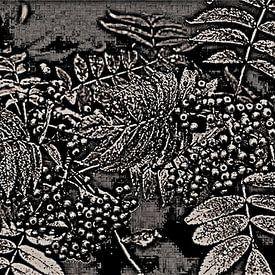 Abstract Autumn Berries In Black And White van Gitta Gläser