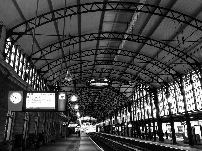 NS Station Den Haag HS (Hollands Spoor)  | Zwart-wit van Carel van der Lippe