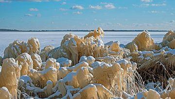 IJssculpturen aan het Lauwersmeer in Nederland van Nisangha Masselink