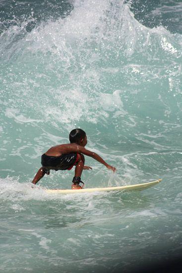Surfdude van Paul Optenkamp