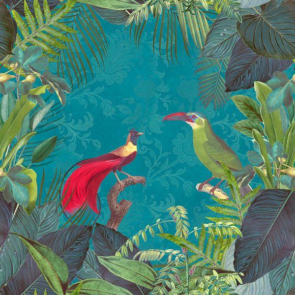 Paradiesvögel von Andrea Haase