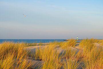 Warnemünde im Dezember von Ostsee Bilder