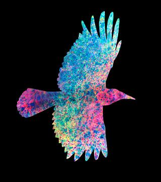 Gekleurde kraai van Bianca Wisseloo