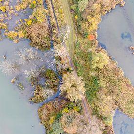 Luchtfoto Nationaal Park De Biesbosch van Jeroen Kleiberg