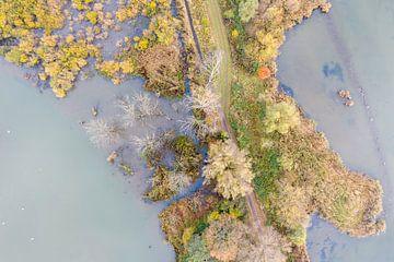 Luftbild Nationalpark De Biesbosch von Jeroen Kleiberg
