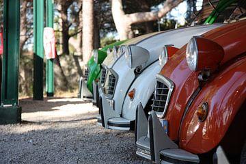 Rijtje Citroën 2CV van Stan Loo