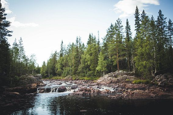 Het schilderachtige landschap van Zweden met waterval van Geke Woudstra
