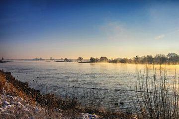 Mistige winterdag bij de Lek van Yvonne Smits