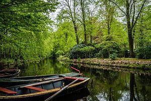 Niederlandische Boot im Frühlingsgrün von Diana Kors