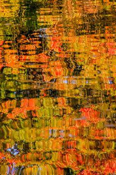 Herfstkleuren von Christel Stevens