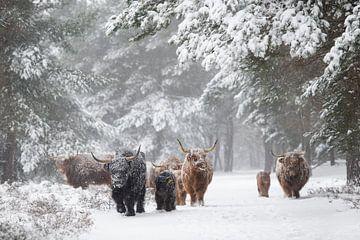 Familie op pad door sneeuwstorm van Laura Vink