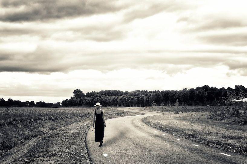 De lange weg naar... van Ellen Driesse