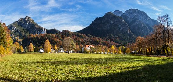 Kasteel Neuschwanstein met bergpanorama