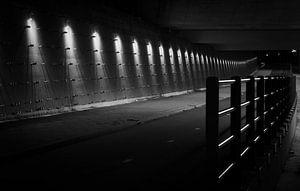 Viaduct bij Rhoon