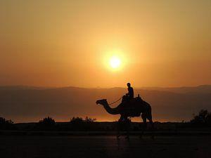 Jongen op kameel tijdens een zonsondergang in Jordanië van Nadine Geerinck