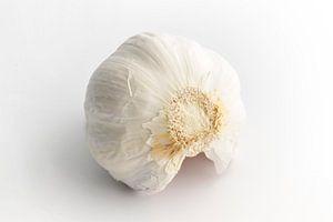 Knoblauchzwiebel auf weißem Hintergrund von Edith Wijte