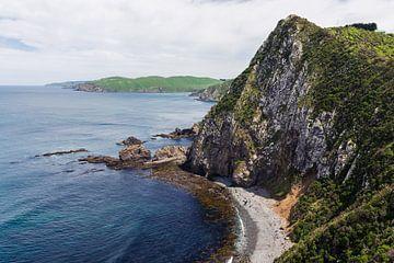 Schöner Strand in den Catlins, Neuseeland von Linda Schouw