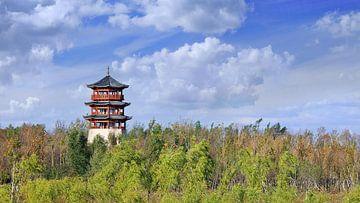 traditioneller Pagode, Bäume, blauer Himmel und dramatische Wolken von Tony Vingerhoets