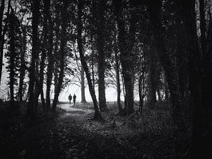 Wandelaars op een bospad