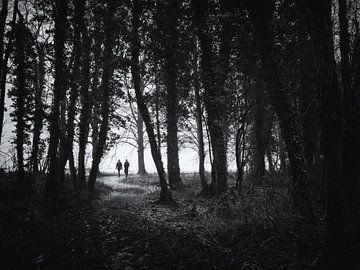 Wandelaars op een bospad van