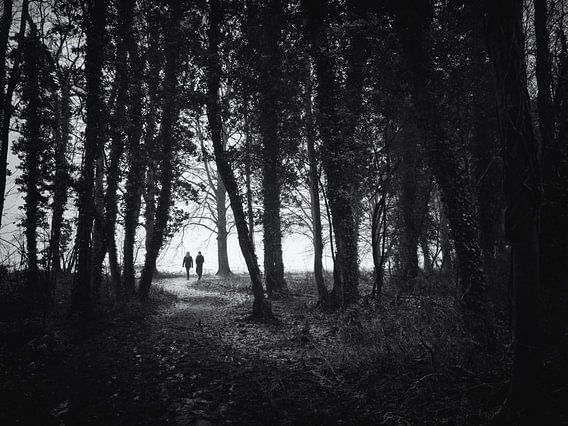 Wandelaars op een bospad van Paul Beentjes