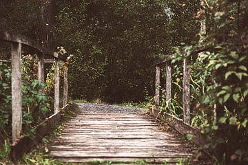 Die Brücke von Bjorn Cornelissen