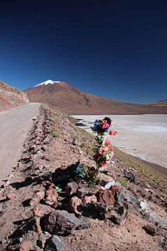 Mahnmal am Straßenrand, Salar de Ascotan, Chile, Vulkan von A. Hendriks