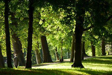Zocherpark in Utrecht er hoogte van Maliesingel sur In Utrecht